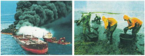 Ô nhiễm dầu trên biển