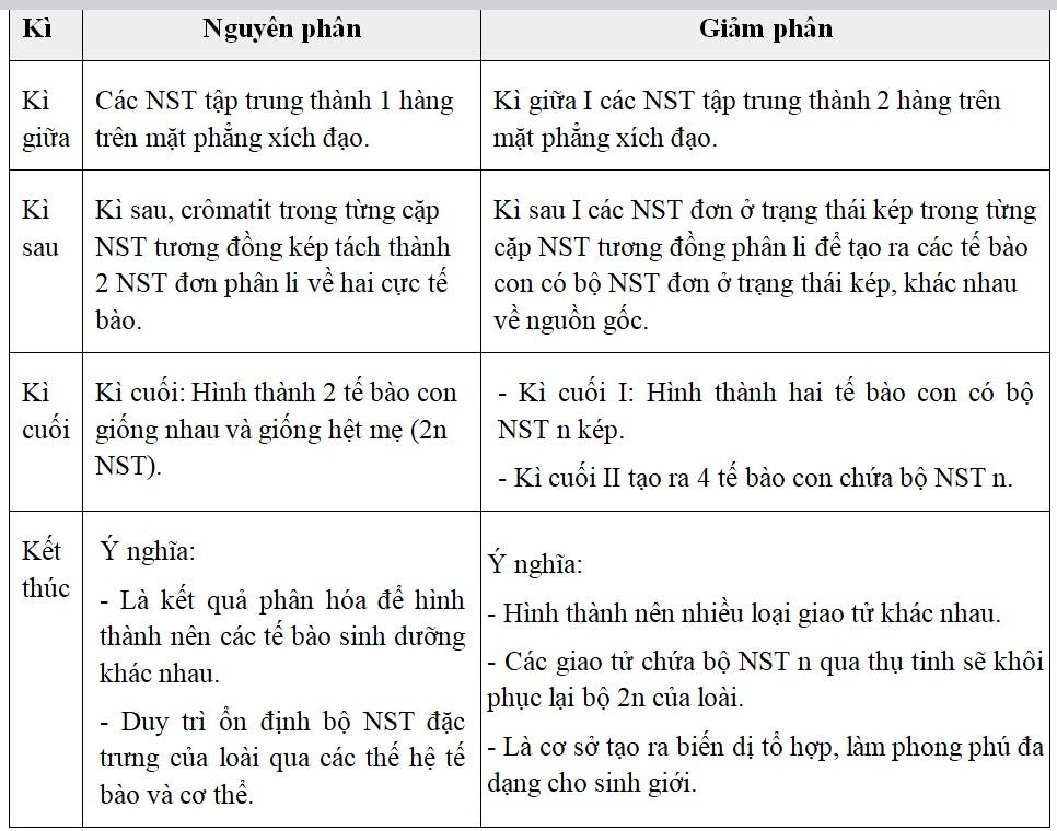 Bảng 65.5. Những điểm khác nhau cơ bản giữa nguyên phân và giảm phân