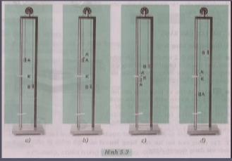Hình 5.3 bài 2 trang 18 SGK Vật lí 8