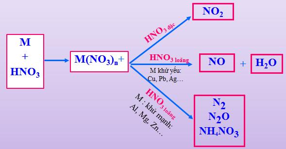Hình 1: Các sản phẩm khử của HNO3