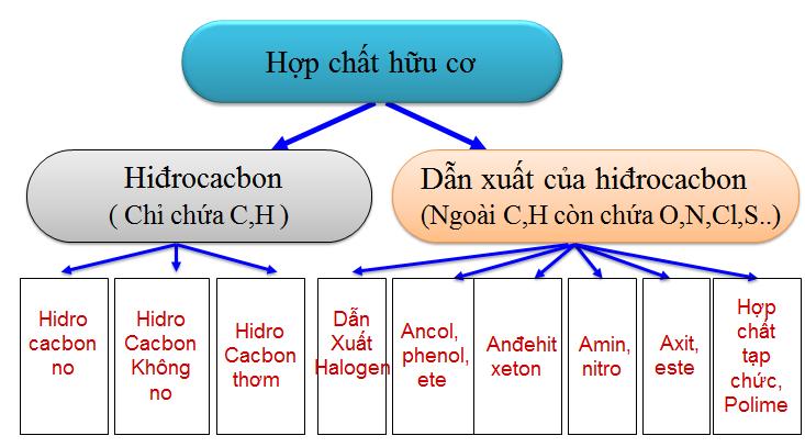 Hình 1: Phân loại hợp chất hữu cơ
