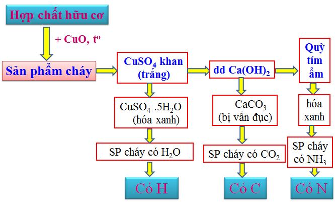 Hình 3: Phương pháp tiến hành phân tích định tính hợp chất hữu cơ