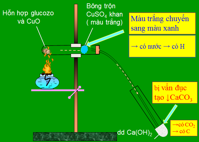 Hình 4: Thí nghiệm xác định nguyên tố Cacbon, Hidro có trong Glucozơ