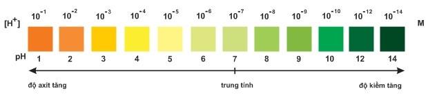 Hình 1: Màu của chất chỉ thị vạn năng