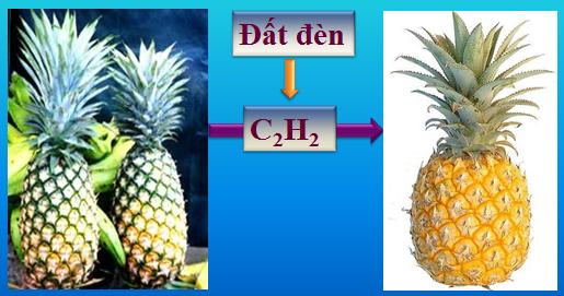 Hình 5: Đất đèn làm trái cây mau chín