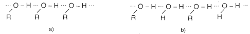 Hình 1: Liên kết Hidro