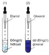 Hình 3: Glixerol hòa tan Đồng (II) hidroxit thành dung dịch màu xanh lam (2)