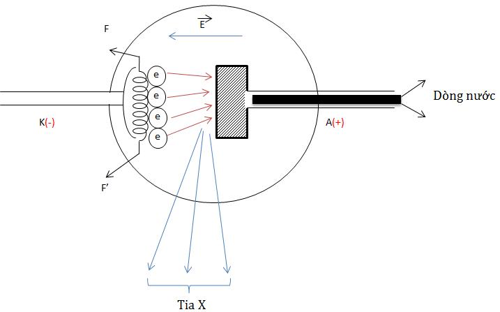 Dùng ống Cu-lít-giơ để tạo ra tia X