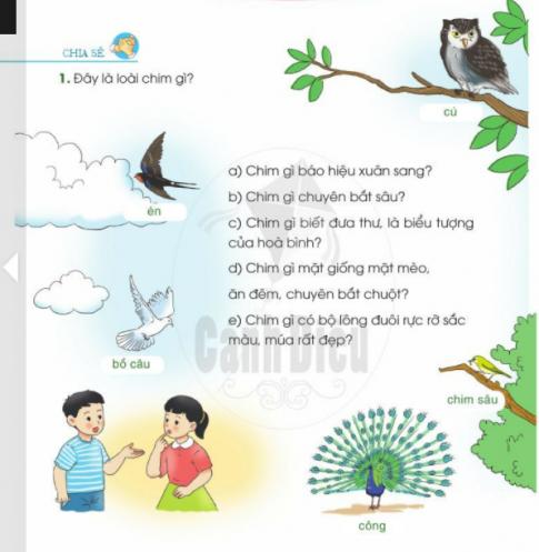 [Sách cánh diều] Soạn tiếng việt 2 tập 2 bài 24: Những người bạn nhỏ