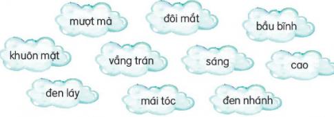 Những từ ngữ nào dưới đây chỉ đặc điểm?