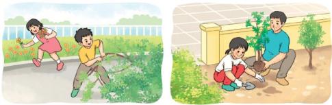 Tìm từ ngữ chỉ loài vật trong đoạn sau. Viết 4 - 5 câu kể về việc em đã làm để bảo vệ môi trường