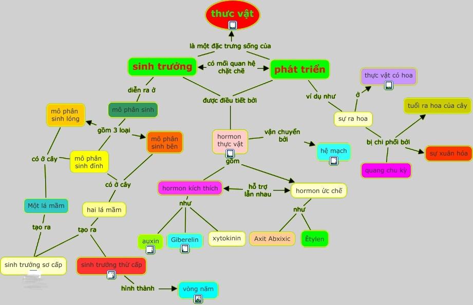 Sơ đồ tổng hợp quá trình sinh trưởng và phát triển ở thực vật