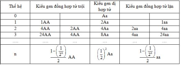Bảng cấu trúc di truyền của quần thể tự thụ