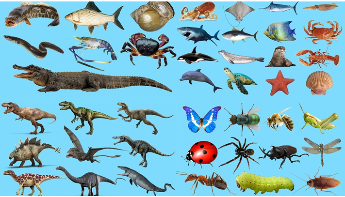 Loài sinh học
