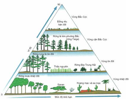 Khu sinh học biom trên cạn phân bố theo vĩ độ và mức độ khô hạn của các vùng trên Trái Đất