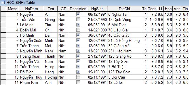 Hình 11. Bảng dữ liệu sau khi nhập dữ liệu bằng biểu mẫu