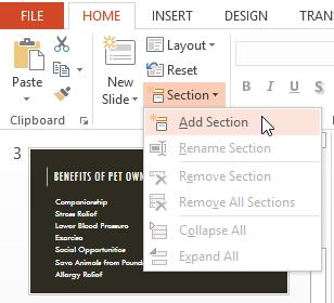 Tạo các Slide Section