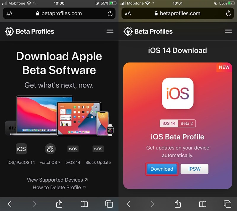 Ccaif đặt iOS 14 Beta 2