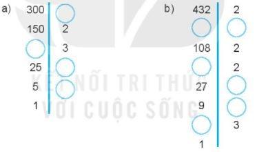 [Kết nối tri thức] Giải SBT toán 6 tập 1 bài 10: Số nguyên tố