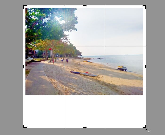 Cách để mở rộng Canvas bằng công cụ Crop